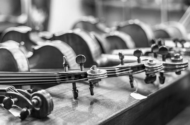 Shop-Vorauswahl-Bild, Streichinstrumente - Bratschen. Foto © Heike Sieber