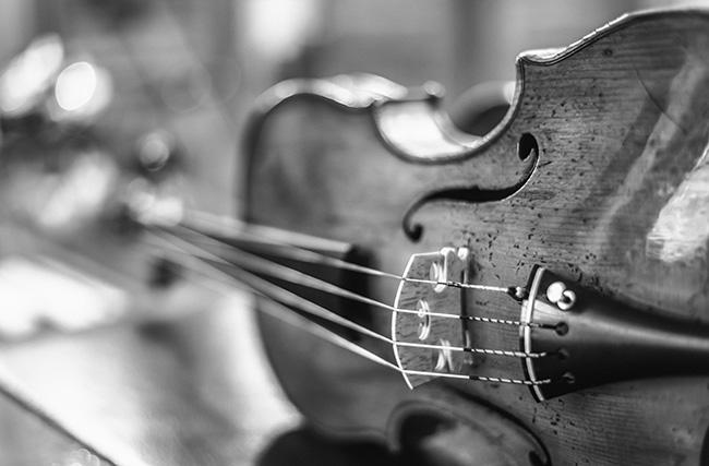 Shop-Vorauswahl-Bild, Streichinstrumente - Violinen. Foto © Heike Sieber