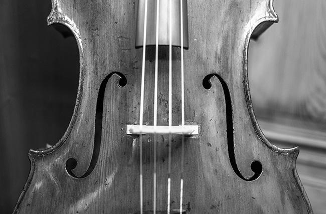 Shop-Vorauswahl-Bild, Streichinstrumente - Violoncelli. Foto © Heike Sieber