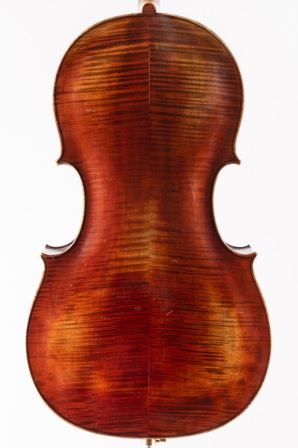 Cello Bisch Boden