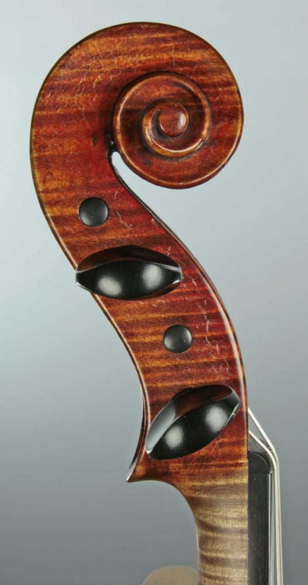 Violine Marco Dobretsovitch Schnecke